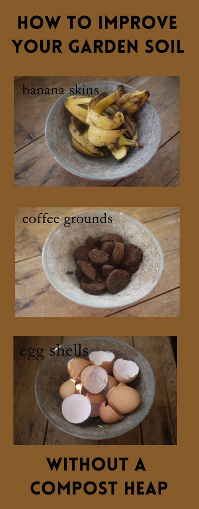 Improve Your Garden Soil - 3 Kitchen Ingredients
