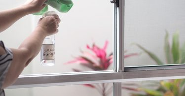 tasteandcraze.com-Easy tricks to have Spotless Windows for Months