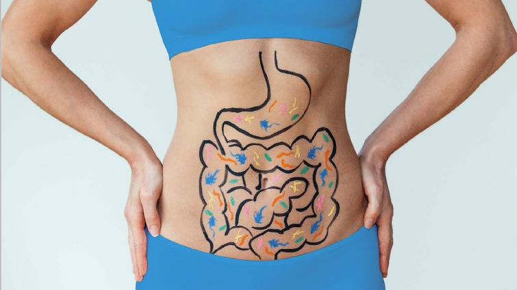 The Best Supplements to Restore Your Gut Health